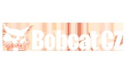 Bobcat_2